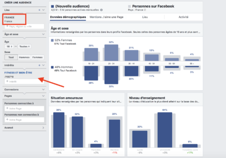 Facebook audience insight interests
