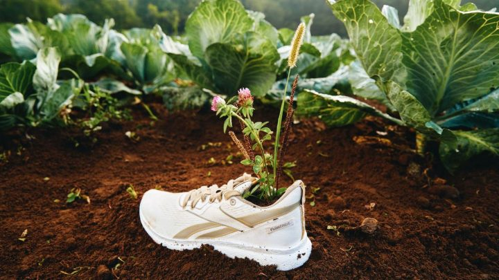 ▷ Eco-conscious company, Reebok launches a plant-based sneaker